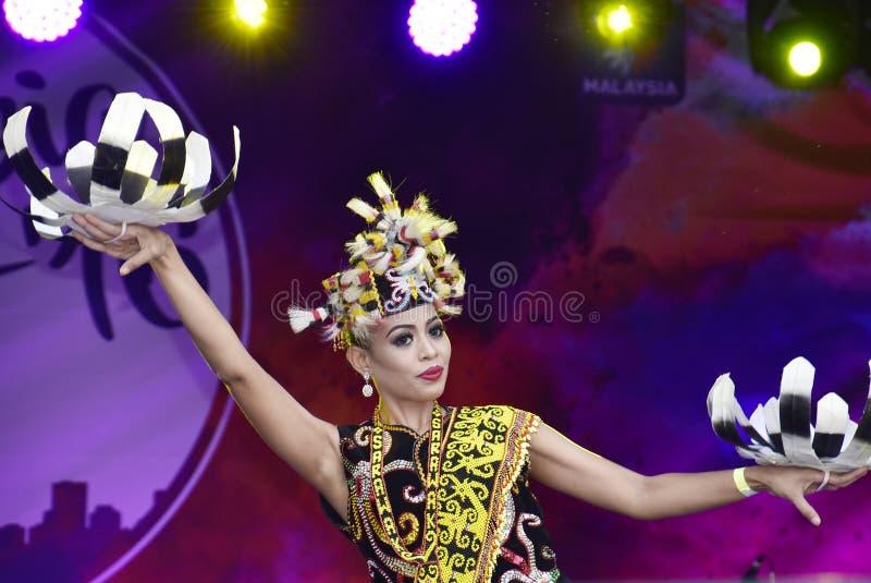 Dança de Enggang imagem de stock