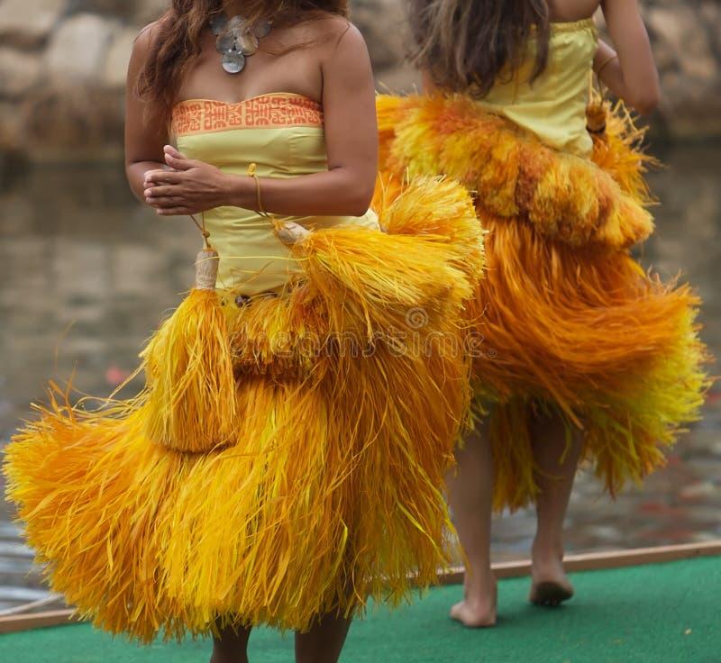 Dança de Hula foto de stock