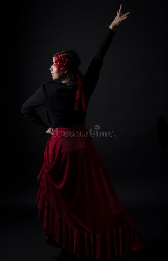 Dança do Flamenco imagem de stock royalty free