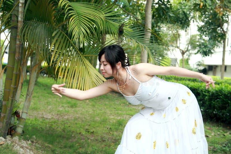 Dança do pavão imagem de stock