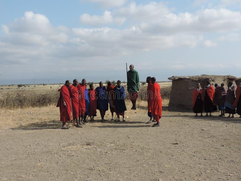 Dança Maasai imagens de stock