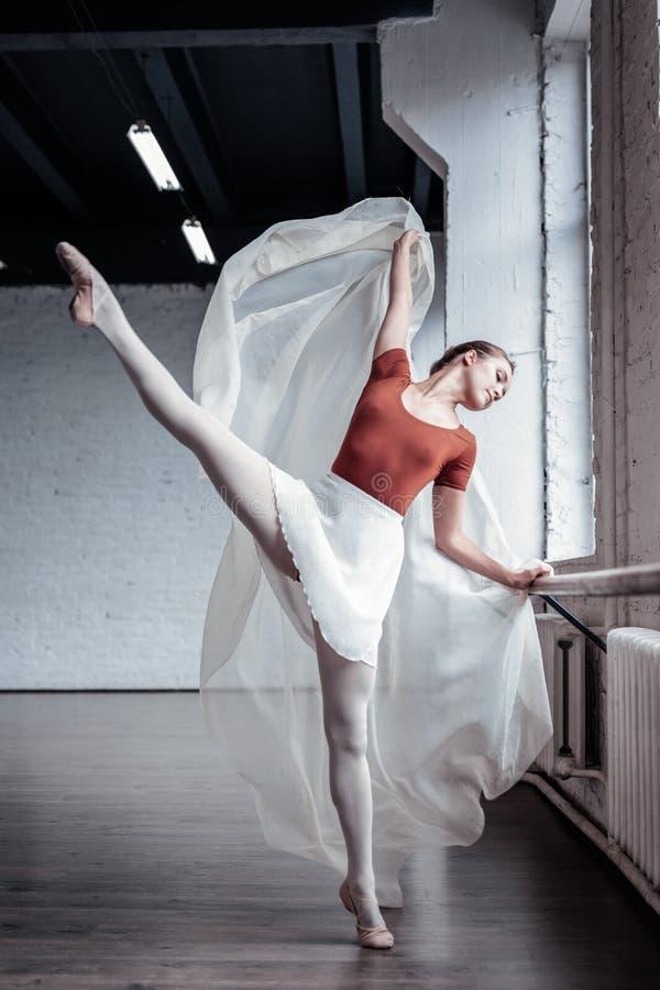 Dançarino de bailado atrativo agradável que aprecia seu trabalho foto de stock
