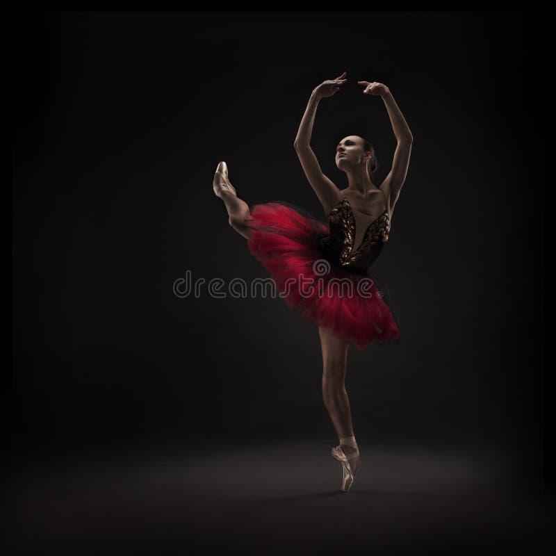 Dançarino de bailado bonito fotografia de stock royalty free
