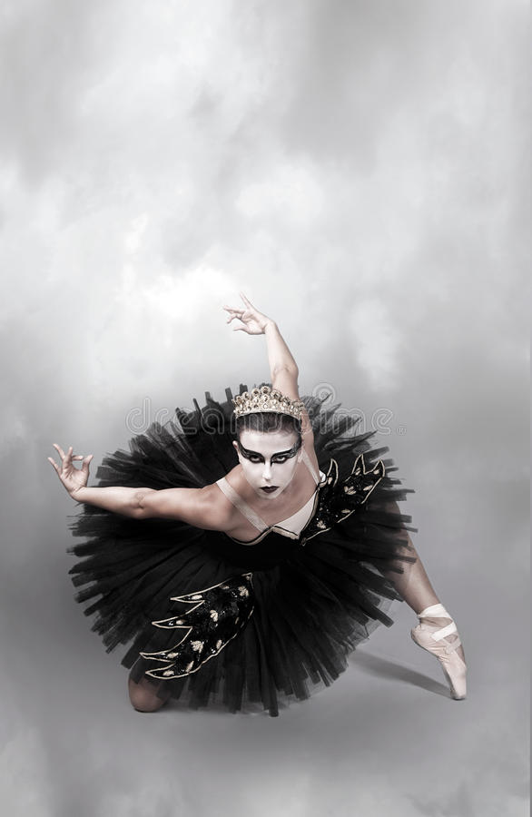 Dançarino de bailado da cisne preta imagens de stock