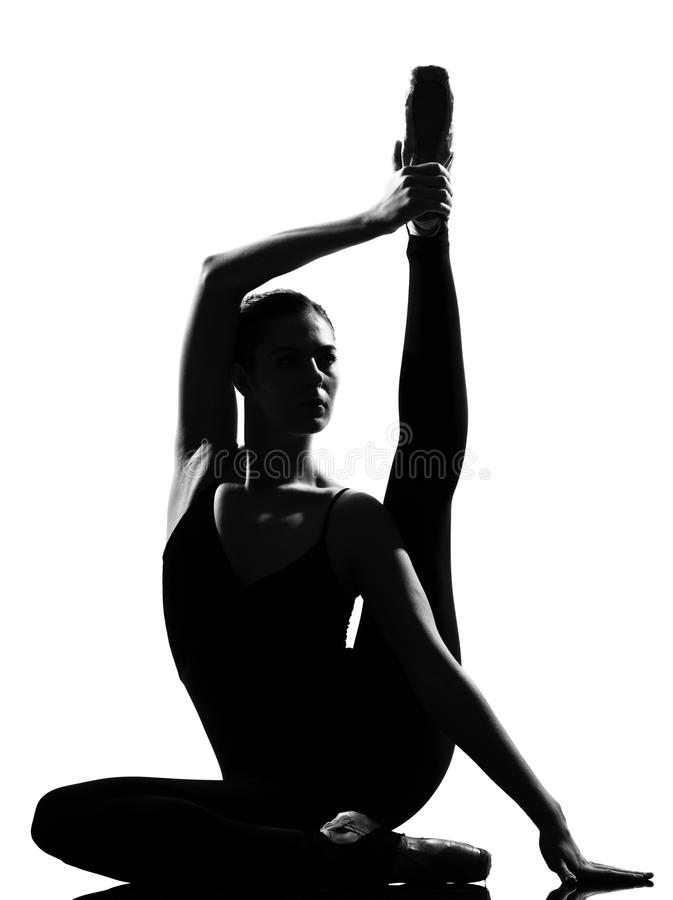 Dançarino de bailado da mulher imagem de stock