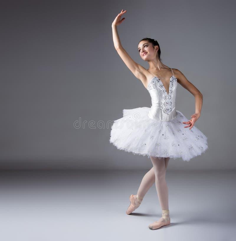 Dançarino de bailado fêmea fotos de stock