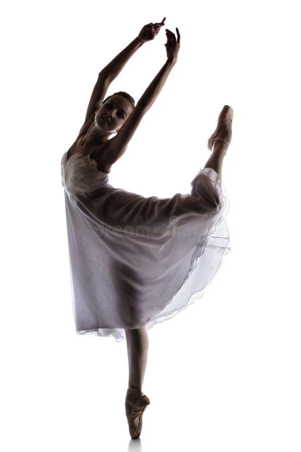 Dançarino de bailado fêmea fotografia de stock royalty free