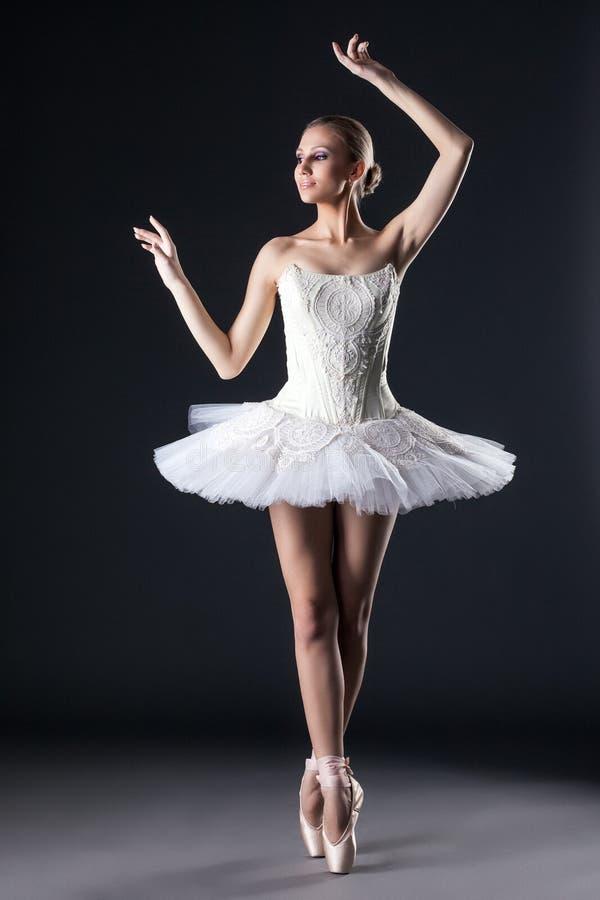 Dançarino de bailado fêmea atrativo que levanta no estúdio imagem de stock