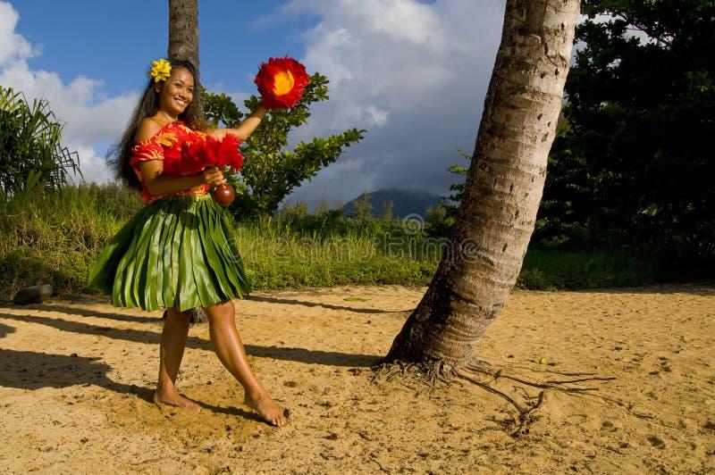 Dançarino novo de Hula imagem de stock