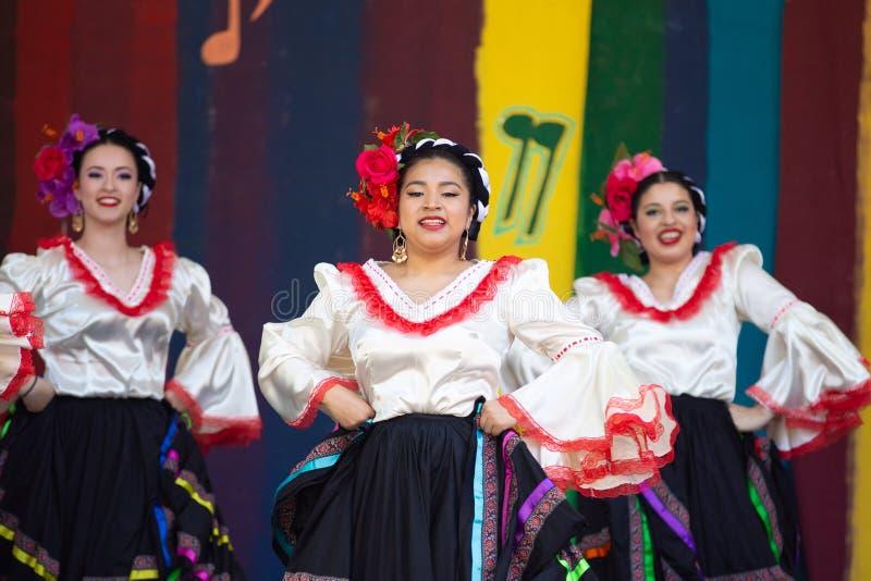 Dançarinos do Latino na celebração do de Mayo do cinco imagem de stock