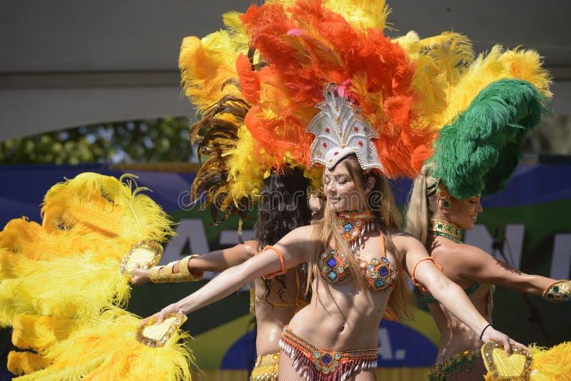 Dançarinos do samba fotos de stock
