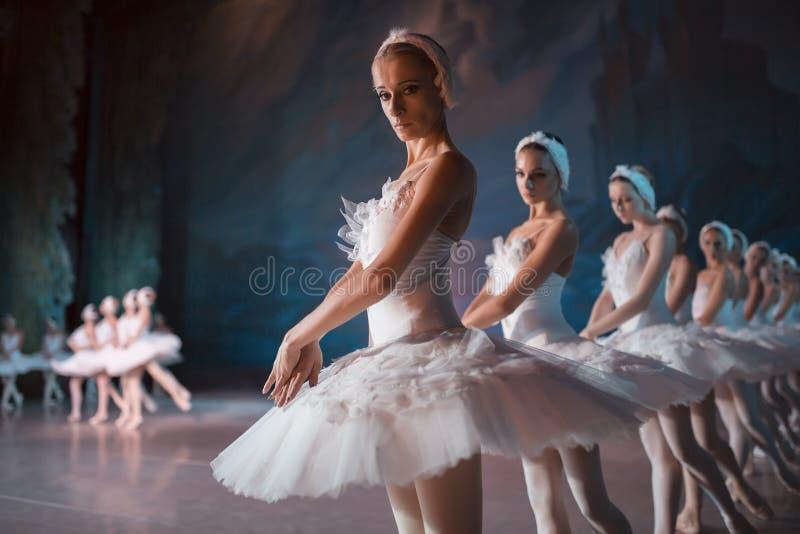 Dançarinos tutu branco na dança sincronizada imagem de stock royalty free