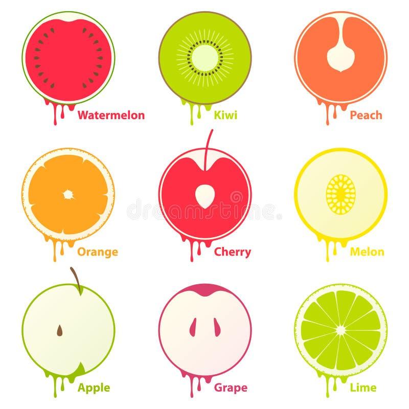 Dan fruto los elementos de los iconos stock de ilustración