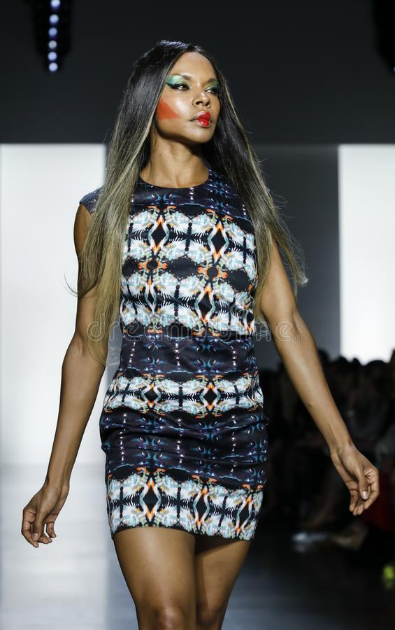 Dan Liu SS19. New York, NY, USA - September 11, 2018: A model walks runway to present Dan Liu Spring/Summer 2019 collection during New York Fashion Week at stock photo