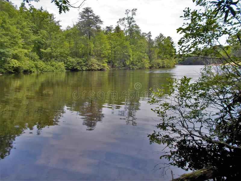 Dan River Calm Water Reflections lizenzfreies stockfoto