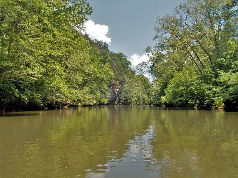 Dan River Calm Water Reflections stockfotos