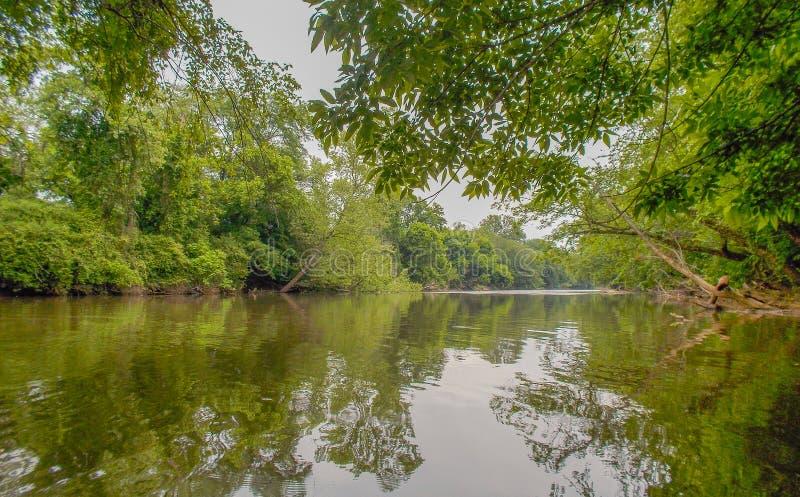 Dan River Calm Water Reflections stockbild
