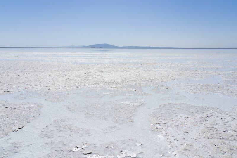 Danakil消沉的盐湖Asale在埃塞俄比亚,非洲 免版税库存照片