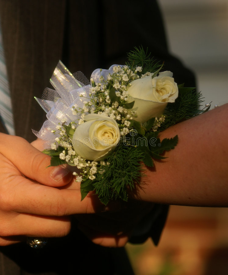 Free Dance Corsage Stock Photography - 1303782