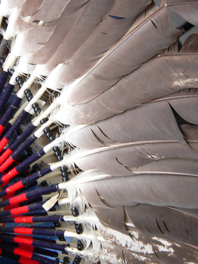 Free Dance Costume Feathers Royalty Free Stock Photography - 227767
