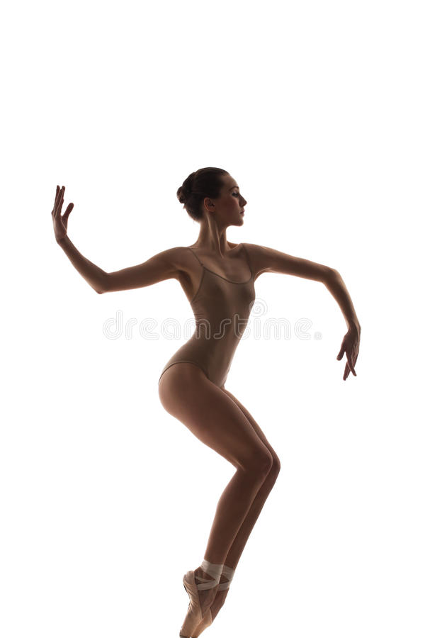 Download The dancer stock photo. Image of ballet, attractive, classical - 29038830