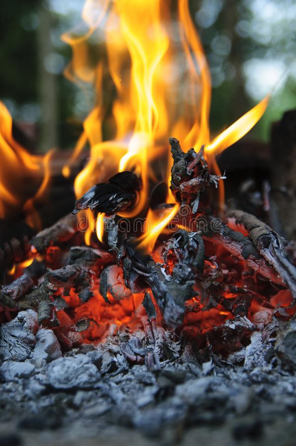 Dancing camping fire royalty free stock images