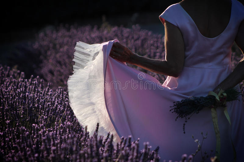 Dancing in Lavender Field stock image