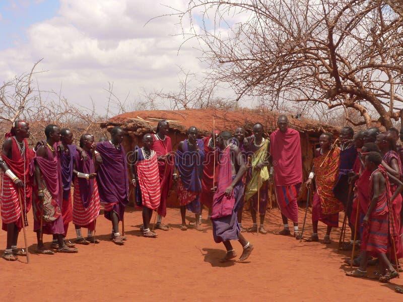dancingowi masai wojownicy zdjęcie royalty free