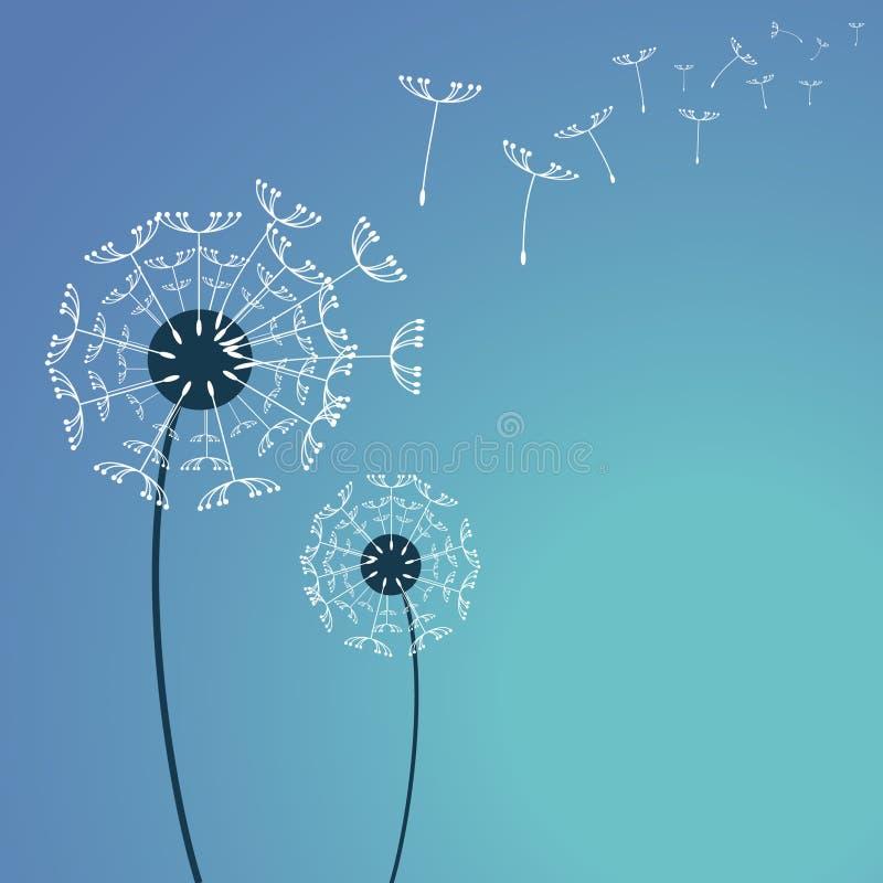 Free Dandelion Stock Image - 11796641