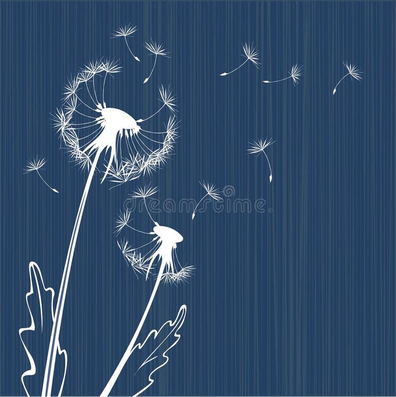 Dandelion background royalty free illustration