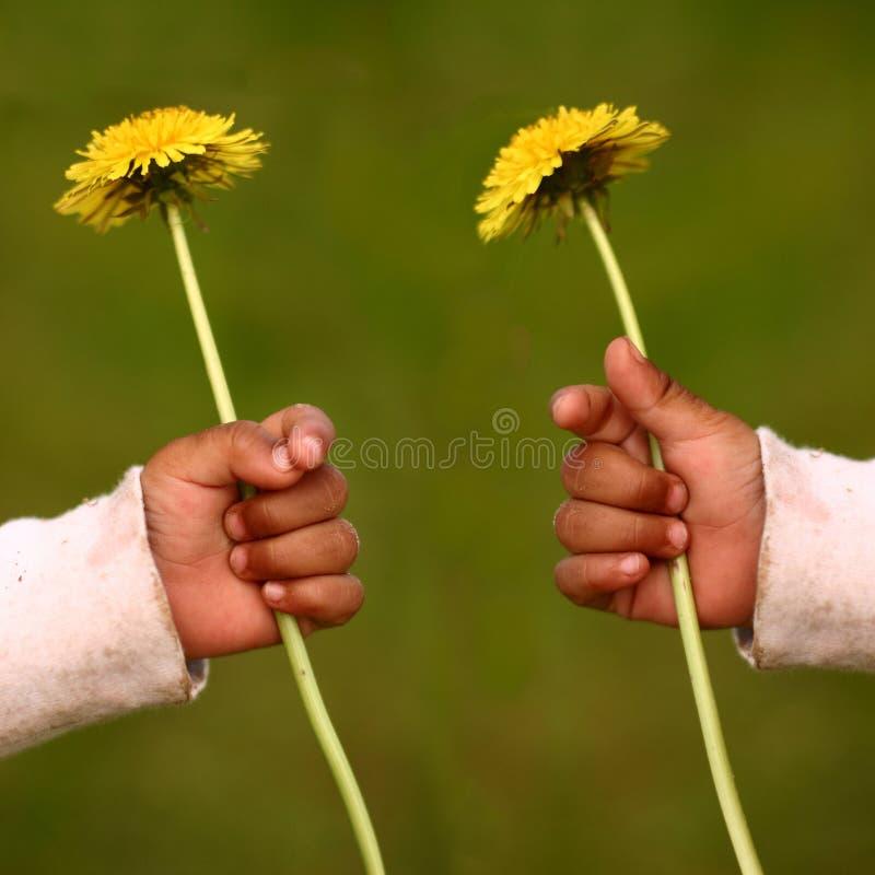 Dandelion child