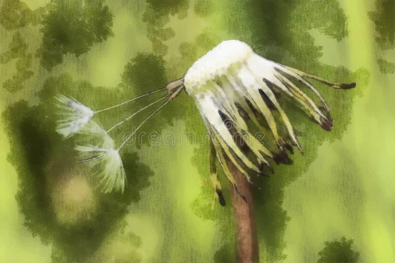 Dandelion. Detail of the seeds of dandelion royalty free illustration