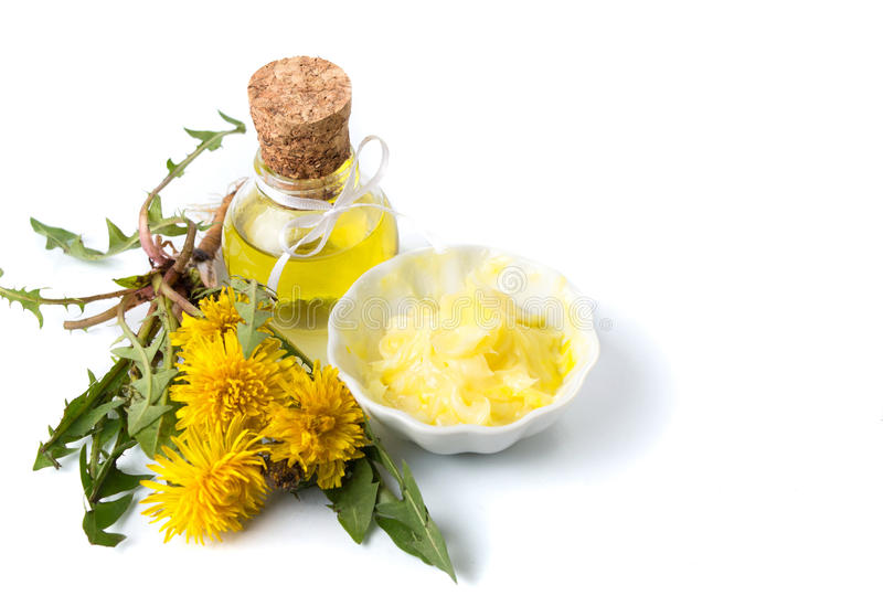 Dandelion flowers with tincture and salve. On white stock photography