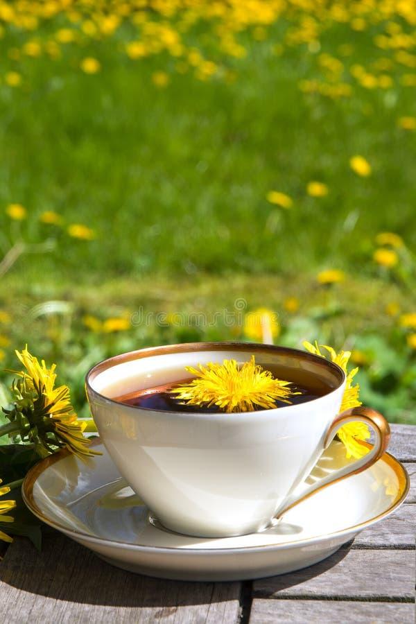 Dandelion herbata w białej filiżance na drewnianym stole przeciw zamazanemu obrazy stock