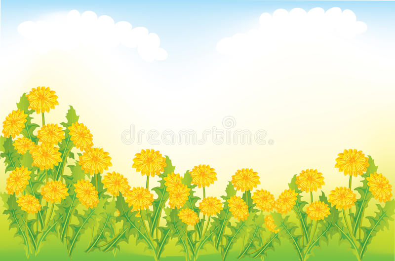 Download Dandelion meadow stock vector. Image of collection, country - 18392095
