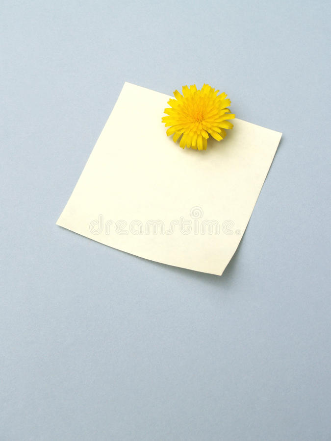 Free Dandelion Note 2 Royalty Free Stock Photography - 14387477