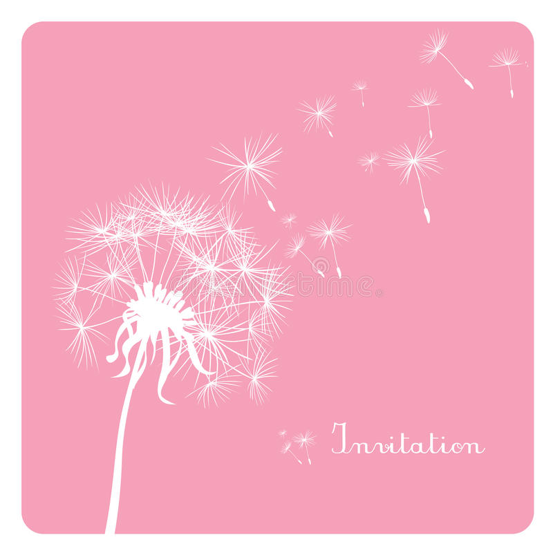 Dandelion On Pink Background Stock Vector