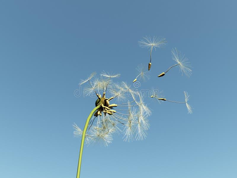 Download Dandelion With Seeds Flying Away Stock Illustration - Image: 11772753