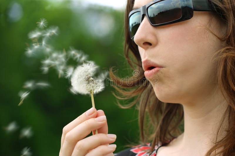 Download Dandelion Seeds In The Wind Royalty Free Stock Photography - Image: 5194477
