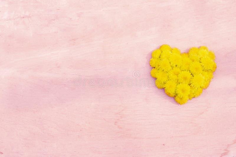 Dandelion serce na drewno powierzchni t?a copyspace obrazy royalty free
