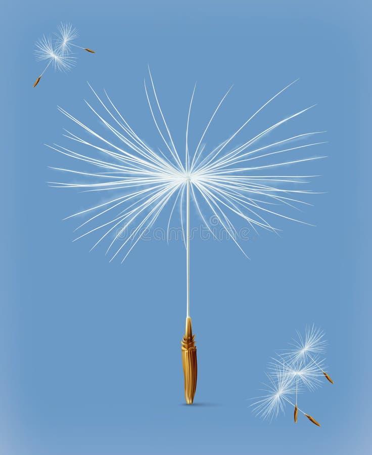Dandelion sia wektorową ikonę royalty ilustracja