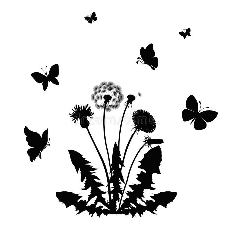 Dandelion. Silhouette blossom dandelion with butterflies. vector illustration stock illustration