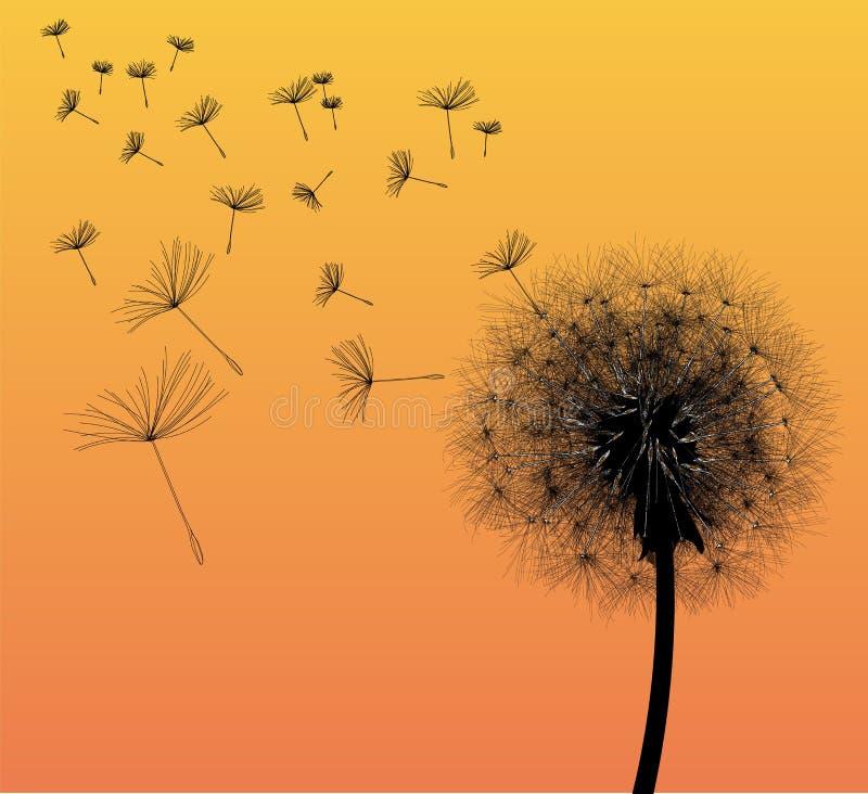 Black Dandelion vector illustration