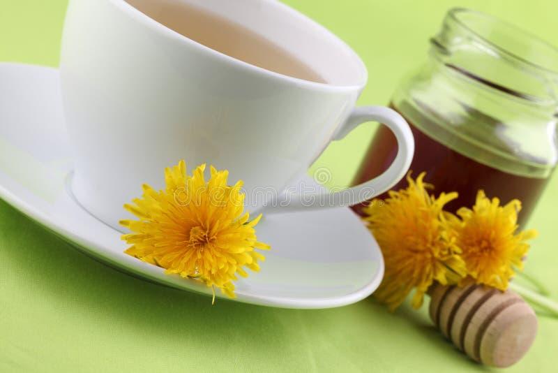 Dandelion tea with honey stock photos