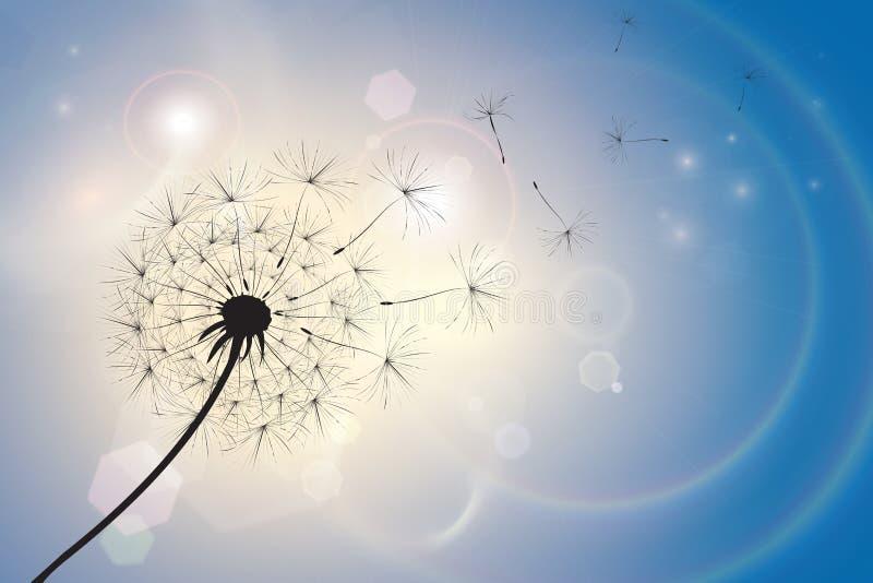 Dandelion w lato popióle ilustracji