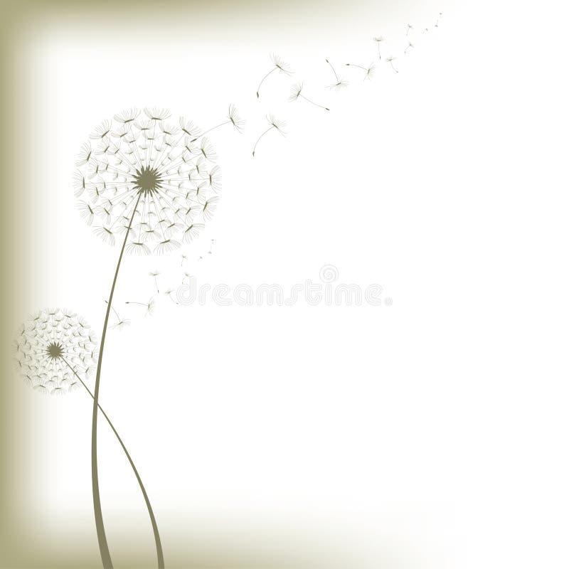 dandelion wektor obrazy stock
