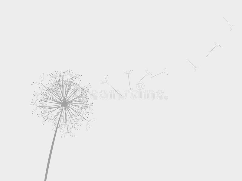 dandelion wiatr ilustracji