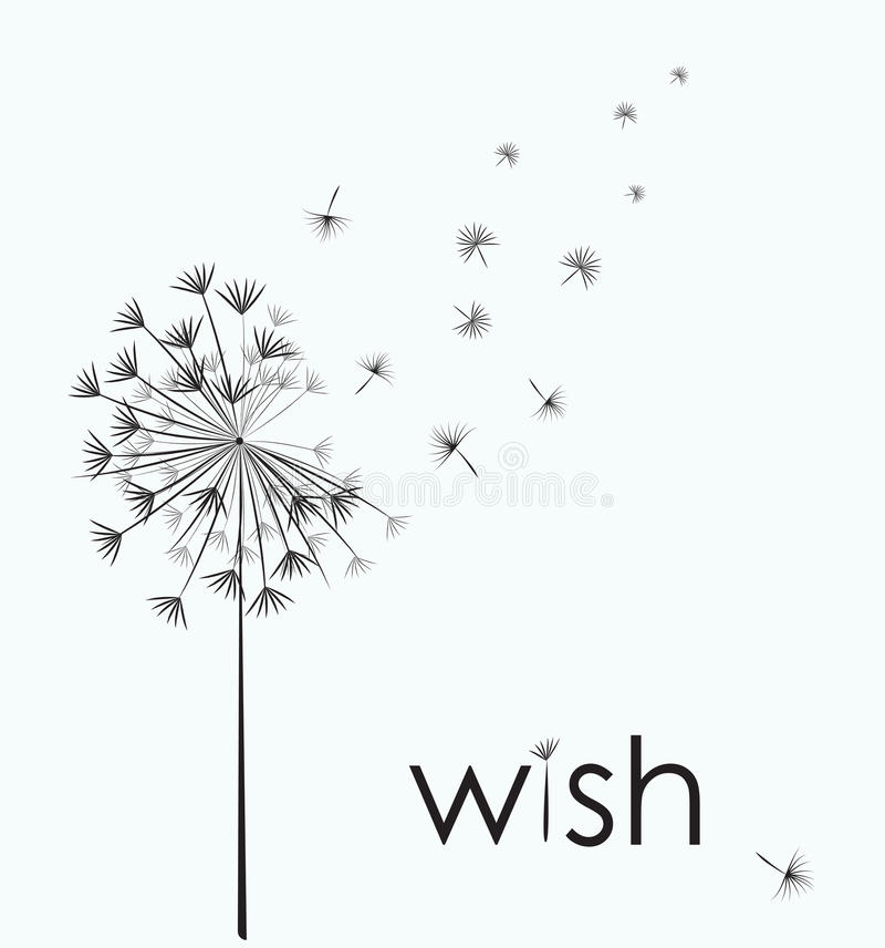 Free Dandelion Wish Stock Images - 85761354
