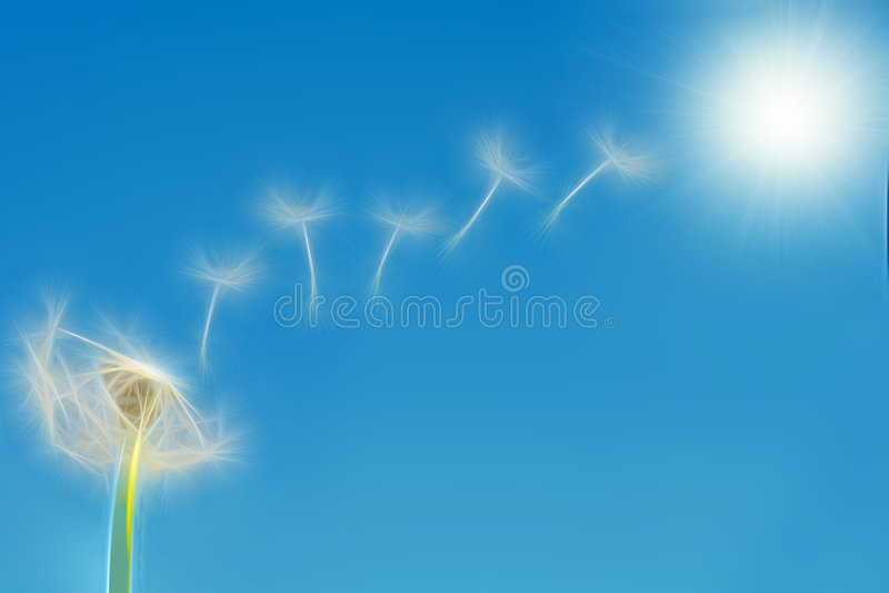 dandelion ziarna latający ilustracyjni royalty ilustracja