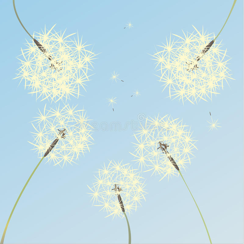 Download Dandelions stock vector. Image of painting, nature, summer - 12021625